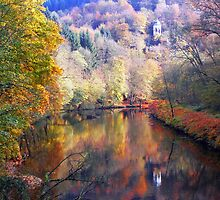 Fall Reflection by ChePhotography