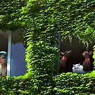Windows by Igor Zenin