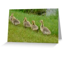 5 little Soldiers,Marching Along...Goslings Greeting Card
