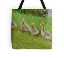 5 little Soldiers,Marching Along...Goslings Tote Bag