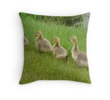5 little Soldiers,Marching Along...Goslings Throw Pillow