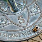 Bee on Sundial by Steve