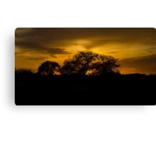 Scenic sunset! Canvas Print