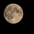 The Moon by Thomas Young