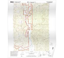 USGS Topo Map Oregon The Bull Pasture 281775 1998 24000 Poster
