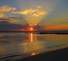 Sunset  by Of Land & Ocean - Samantha Goode