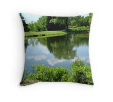 COUNTRY SCENE ^ Throw Pillow