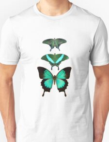 3 butterflies T-Shirt