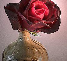Antique Rose in Vase by Floyd Hopper