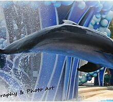 Dolphine Love by KPLove