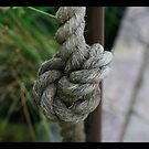 Knot by Kelli Dubay