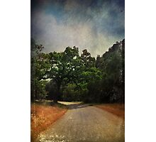 Another Bend In The Road Photographic Print