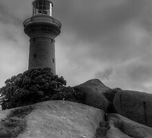 Montague Island Lighthouse by Josh Boyd