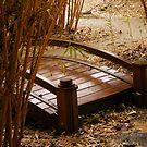 Bridge in the Bamboo by Jonathon Wuehler