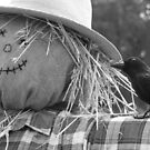 Not so Scared Crow and Friend by Jonathon Wuehler