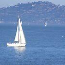 Smooth Sailing by Jonathon Wuehler