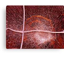 Smash....!!! Canvas Print