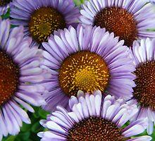 Purple Orange Flower Cluster by Jonathon Wuehler