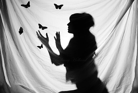 Butterfly Catcher by Bethany Holland