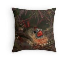 Nesting Instinct Throw Pillow