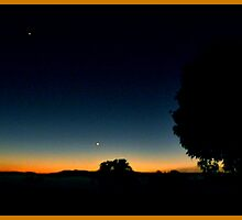 Stars Before the Sun (Gildora-Mary Valley) by Burnie