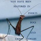 Banner for CREEPY CRAWLIES by Heidi Mooney-Hill