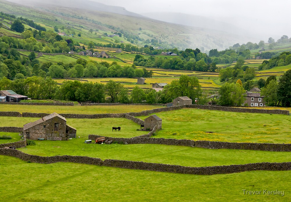 Mist in the Dales by Trevor Kersley