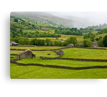 Mist in the Dales Canvas Print