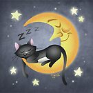 The Cat and the Moon by Taylor Smith