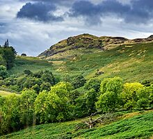 The Ochils by Jeremy Lavender Photography