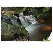 Water Movement - Tillman Ravine Poster