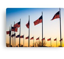 Circle of Flags Canvas Print