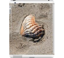 heart shells on the beach iPad Case/Skin