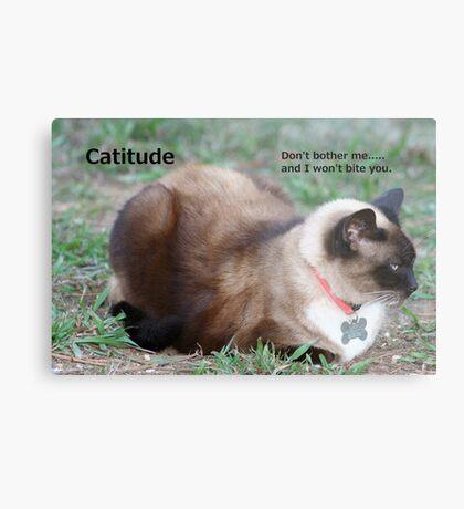 Catitude Metal Print