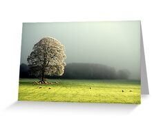 """LIGHT THROUGH THE MIST"" Greeting Card"