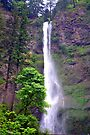 """Upper Multnomah Falls"" by Lynn Bawden"