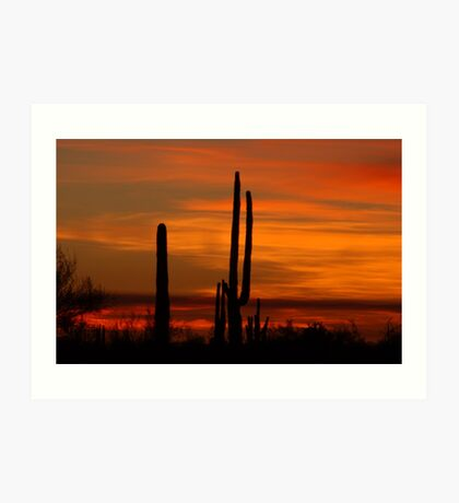 Saguaro sunset collection #10 Art Print