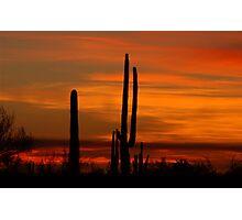 Saguaro sunset collection #10 Photographic Print