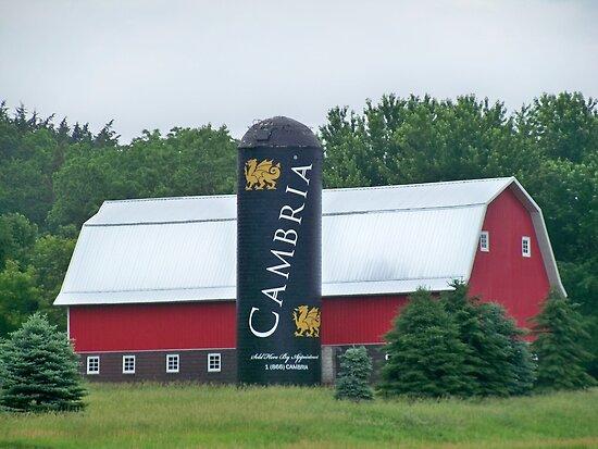Cambria Silo Barn by Diane Trummer Sullivan