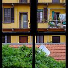 From The Window by jimmylu