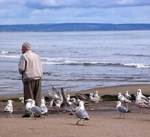 Man with Seagulls by Connie Hartsfield