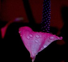 I'll do my crying in the rain by Alan Mattison