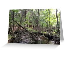 Naturescape 1 Greeting Card