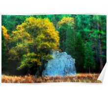 Autumn Oak and Rock Poster