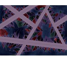 Pattern Cage Photographic Print