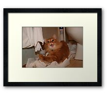 Oops..... Busted Framed Print