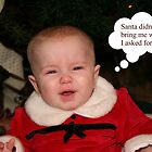 Santa Didn't Bring Me What I Wanted by DebbieCHayes