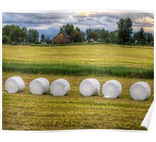 Marshmallows in the Field Poster
