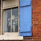 Window by Karl R. Martin
