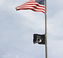 Flags by Karl R. Martin